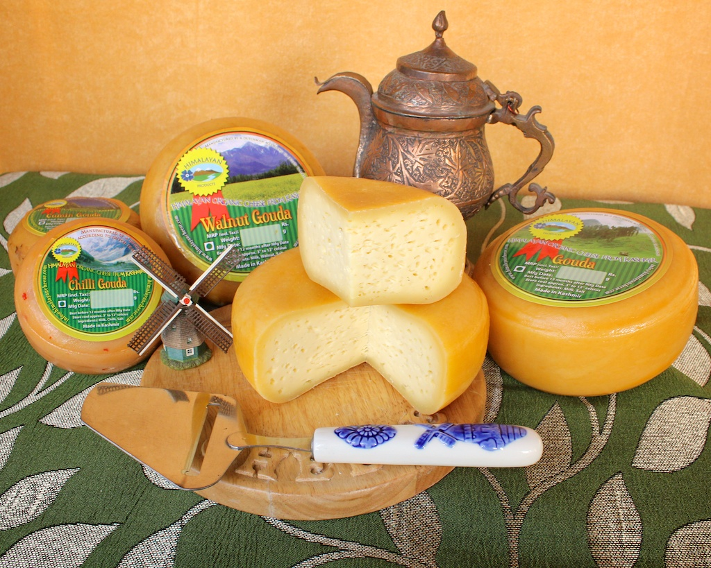 Natural Artisan Gouda cheese made in the Himalayas of Kashmir, India