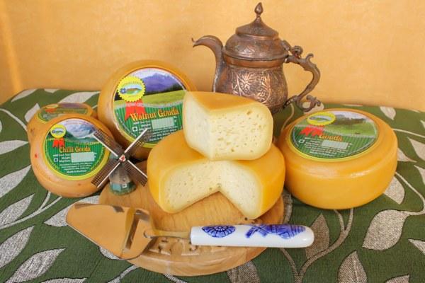 Natural Artisan Gouda cheese made in the Himalayas of Kashmir, India