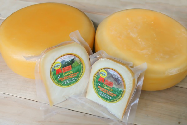 Natural Gouda and Cheddar artisan cheese wheels and wedges made in the Himalayas of Kashmir, India